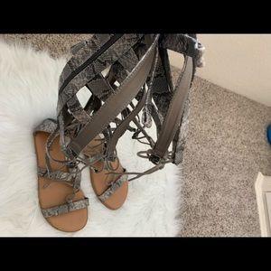 Torrid faux snakeskin gladiator sandals